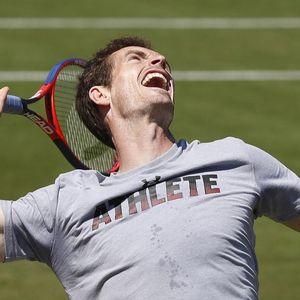 OD NAJBOLJEG NA SVETU, DO ČELENDŽERA: Endi Mari odustao od US Opena zbog turnira na Majorci!
