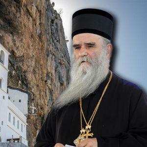 AMFILOHIJE SRPSKE CRKVE U CRNOJ GORI UKNJIŽIO NA SEBE? Vo imja oca šta se dešava u Ostrogu!