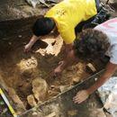 Пронајден скелет на најдревниот исправен мајмун