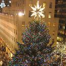 Почна предновогодишната еуфорија - поставени најскапите елки во светот