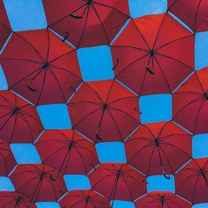 Оваа компанија тврди дека направила неуништлив чадор