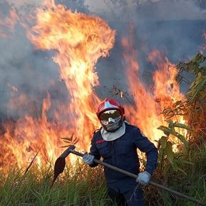 Боливия взе под наем суперсамолет за борба с горски пожари в Амазония