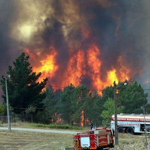POŽARI I DALJE BUKTE U PORTUGALIJI: Vatrogasci nemoćni da savladaju stihiju, do sada najmanje 39 povređenih