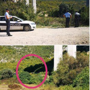 OKONČANA ISTRAGA UBISTVA LANE BIJEDIĆ: Ubica nije pronađen ni posle više od 2 meseca, jedna stvar ostala neispitana!