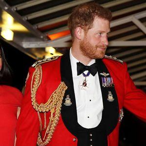 ŠOK! PRINC HARI NIJE OTAC MALOG ARČIJA?! Spekulacije URNIŠU kraljevski par, uradili i 2 DNK?!