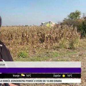 KO BI OVO JOŠ URADIO? Majka troje dece okačila diplomu fakulteta o klin, pa sela u kombajn da obrađuje zemlju (KURIR TELEVIZIJA)