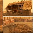 MISTERIJA STARA 5.000 GODINA U SRBIJI Najveći grad KAMENOG DOBA napušten u žurbi i spaljen, a arheolozi sad ispituju šta se desilo