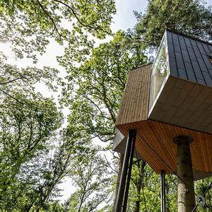 """Дали би одвоиле 22.600 денари за една ноќ во најубавата """"куќичка на дрво"""" во Данска?"""
