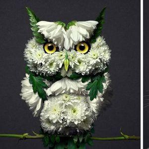 Уметникот ги претвора цвеќињата во скулптури на животни, а резултатите се како живи чуда