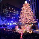 Три милиони сваровски кристали поставени на новогодишната елка во Њујорк
