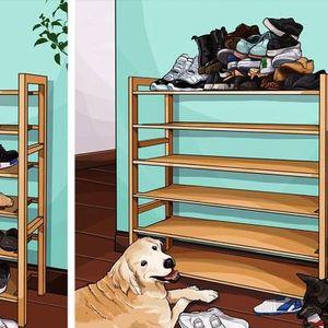 Илустратор од Тајван преку стрипови покажува како изгледа животот пред и откако ќе си земете миленик