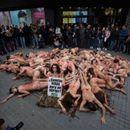 Во Барселона протест за заштита на животните
