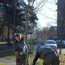 Општината Карпош со еколошка акција засади 200 нови дрвја