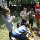 Со садење цвеќиња учениците од Скопје го одбележаа Денот на планетата Земја
