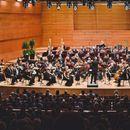 """Концерти на """"Елогио"""" и """"Ну погоди"""" во Филхармонија"""