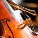 Инспиративен подиум на младите виолинисти