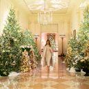 Светнаа новогодишните елки во Белата куќа