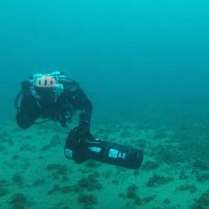 Нуркачи открија живеалишта на загрозен вид рак во Охридското Езеро