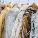"""Модните куќи """"Александар Меквин""""  и """"Баленсијага"""" се збогуваа со крзното"""