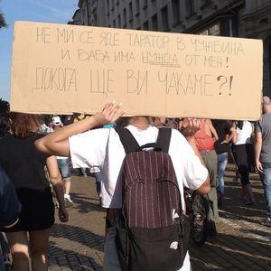 Коментарът на Мис Тигрова за протестите