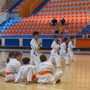 """Polaganje za učenička zvanja članova Karate kluba """"Sirmium""""  VIDEO"""