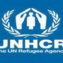 УНХЦР: Бројот на раселени лица во светот достигна 70 милиони, потребна е солидарност