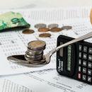 Za subvencije u 2021. godini 119,99 milijardi dinara: Najviše ide NJIMA!