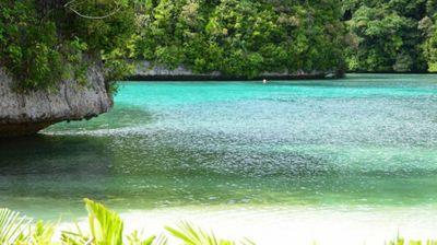 Na Floridi je jeftinije iznajmiti ovo ostrvo nego uplatiti smeštaj u hotelu?!
