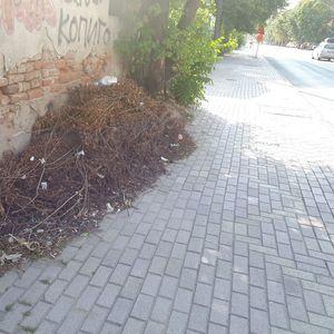Џабе што ја исчистија улицата кога не го тргнаа ѓубрето