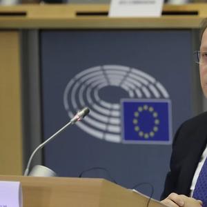 Еврокомесарот Вархеји против одвојување на Северна Македонија и Албанија
