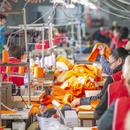 Задржувањето на работниците ќе биде клучно за повторно нормализирање на производството, апел да внимаваат што потпишуваат
