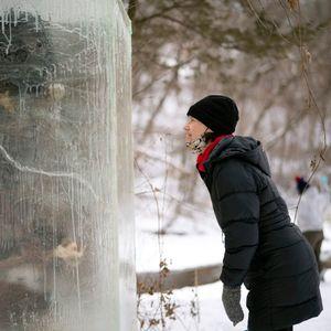 ФОТО: Мистериозна статуа во мраз ги преплаши посетителите на еден парк во Америка