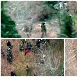 ВИДЕО I Еден мигрант загина, а неколку се повредени во експлозија во минско поле во близина на Плитвице
