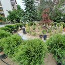 Скапо било да се одржуваат фонтаните: Општина Аеродром во нив ќе сади цвеќиња