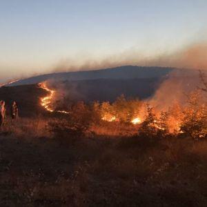 """Големиот пожар ја """"изгоре"""" државната неподготвеност за справување со кризни ситуации"""