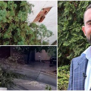 ФОТО | Славчо Попоски, ти симнуваме капа: Дрва испопаѓаа во Велес, чувајте се и понатаму ќе има ветер 60км/на час!