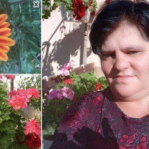 ФОТО | Убавиците на Дафина: Делчево мириса на цветен парфем поради ова дворче