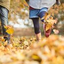Autumn Equinox 2019: The science behind the changing seasons