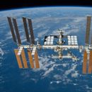 Astronauts could grow own meat in space after successful test on the International Space Station