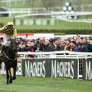 Cheltenham Festival 2020: When does it start, what is the race schedule and which horses should I look out for?