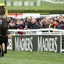 Cheltenham Gold Cup 2020: What date is the race, what are the odds and which horses are running?