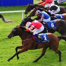 """Son Of Rest """"more than likely"""" to have crack at Ayr Gold Cup after second in Group 1 Flying Five"""