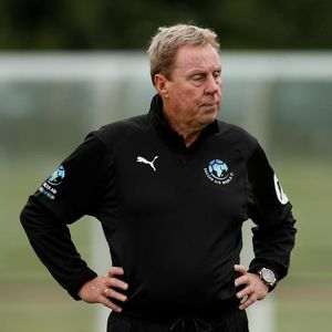 What is Harry Redknapp's net worth, how old is the former I'm A Celebrity winner and what's Harry's Sandbanks Summer?