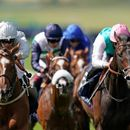 Racing review: Hotpots and howlers from another week in the sport of kings