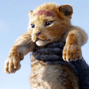 Wipe out hunters or the only lion left to see will be The Lion King's Simba