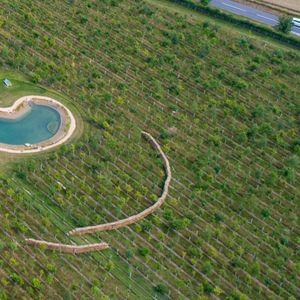 Ed Sheeran angers neighbours AGAIN as singer uses 'hay bales to keep £500k swimming pond secret'