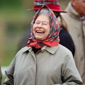 The Queen 'giggled like a schoolgirl' when she heard a rude joke about Viagra and has a 'wicked' sense of humour, a royal courtier reveals