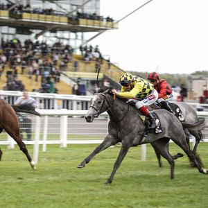 Newbury races: tips, racecards and previews for Saturday's card on Mill Reef Stakes day