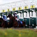 Newspaper tips: Sun Racing's Each-Way Thief and today's horse racing NAPs for Wednesday