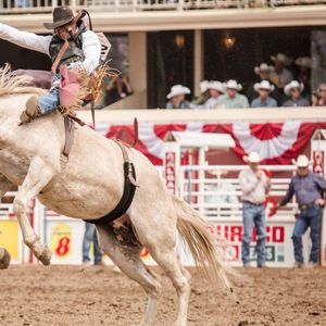 Visit Calgary for the Greatest Outdoor Show On Earth and get a taste of true cowboy life